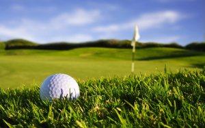 Golf - Mick's New Expensive Habit