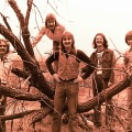Silver Laughter 1976 - Paul, Ken (in the tree), Jon, Carl Frisch (sound and lights) and Mick