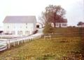 Ludtke Pony Farm circa 1970