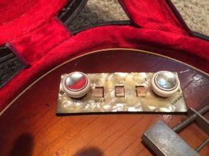 older Hofner controls